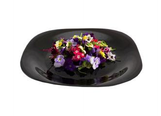Jedlé kvety 60ks